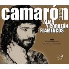 ALMA Y CORAZON FLAMENCOS