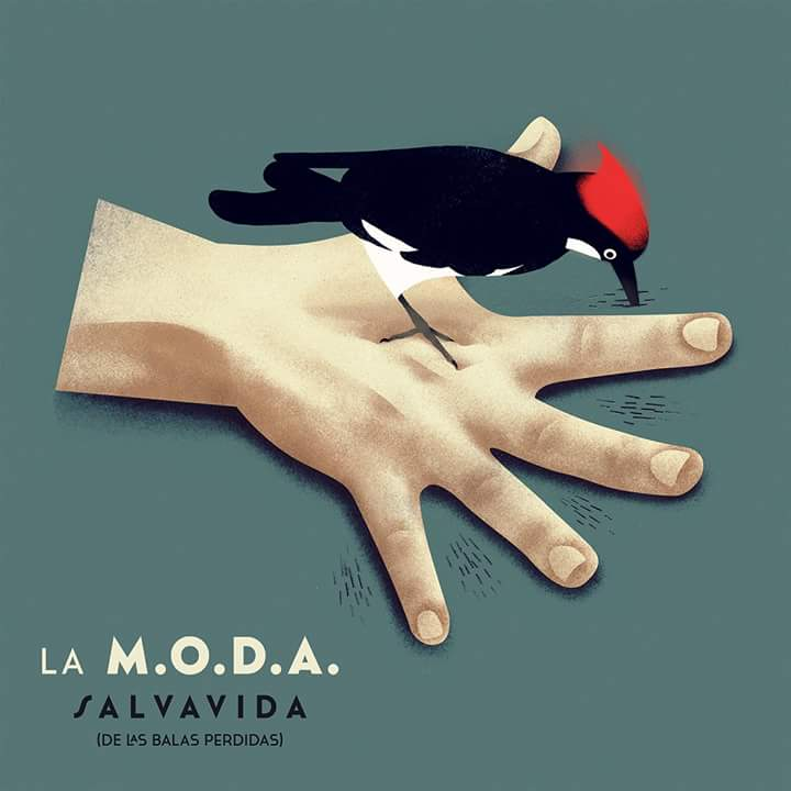 SALVAVIDA -DIGI-